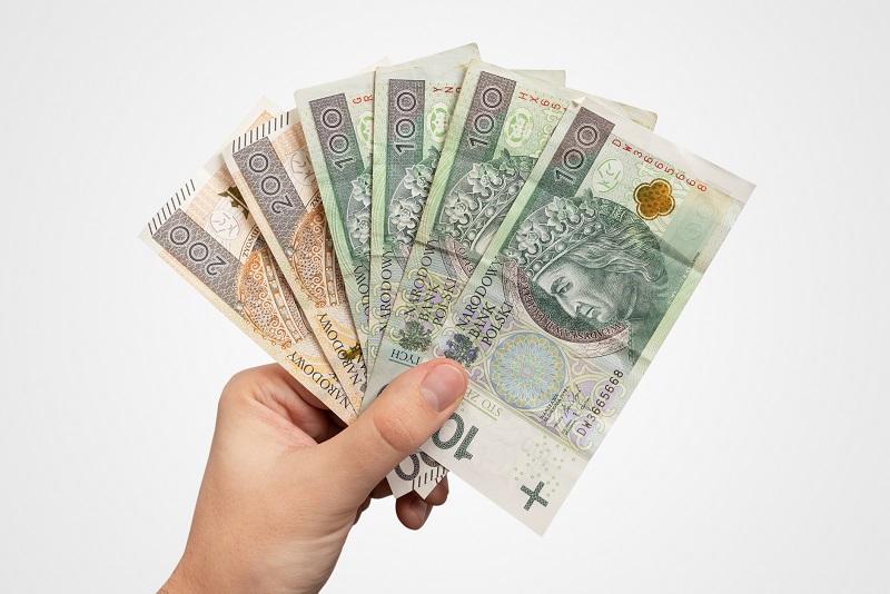 pieniądze trzymane w ręce